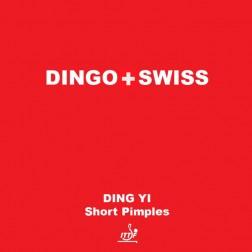 TT Schläger Belag Dingo Swiss Short