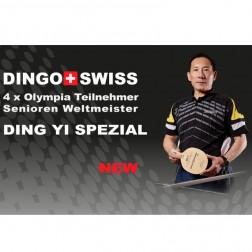 Tischtennis Privat Lektion Ding Yi